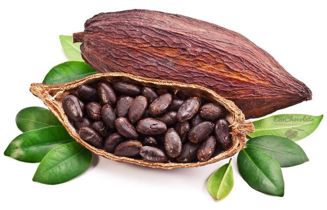 Масло какао для лица и от морщин вокруг глаз