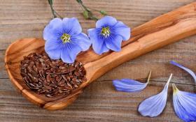 Семена льна - эффективный способ омоложения лица